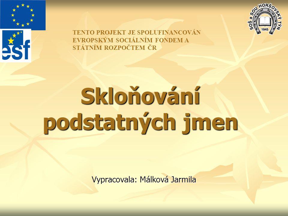 Skloňování podstatných jmen Vypracovala: Málková Jarmila TENTO PROJEKT JE SPOLUFINANCOVÁN EVROPSKÝM SOCIÁLNÍM FONDEM A STÁTNÍM ROZPOČTEM ČR