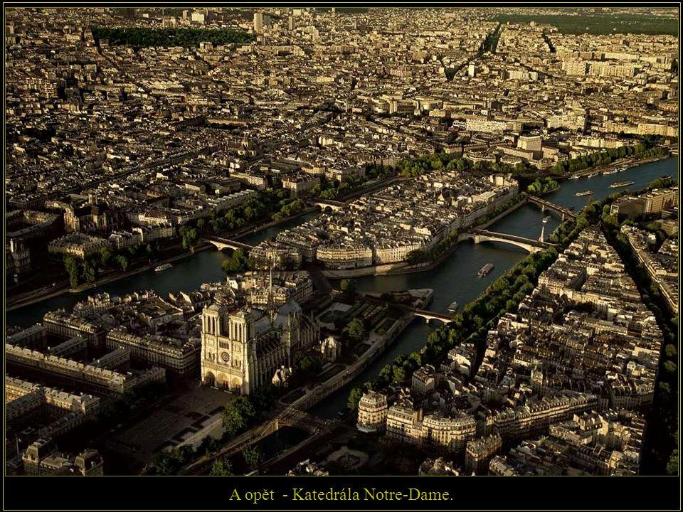 Katedrála Notre - Dame na ostrově Île de la Cité, který je na řece Seině.