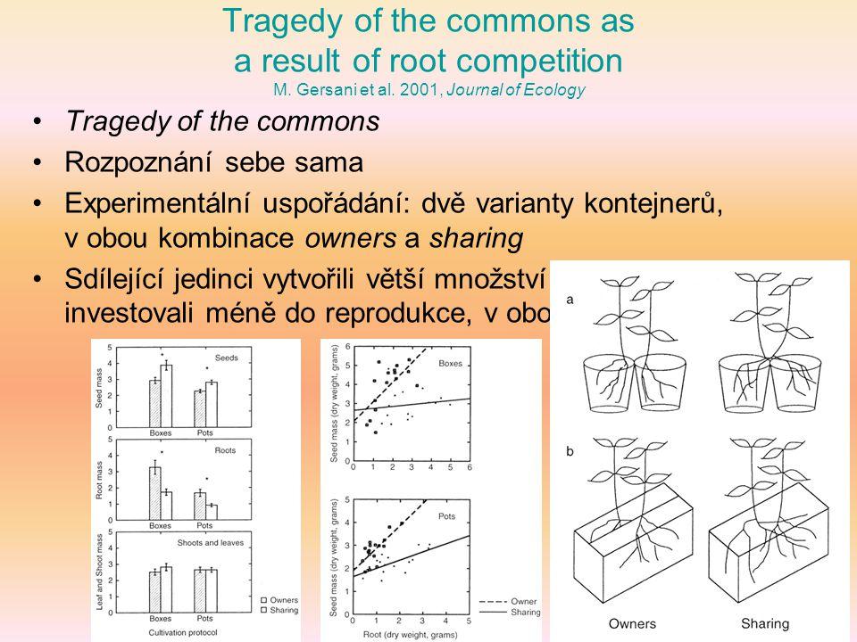 Plant kin recognition enhances abundance of symbiotic mycorrhizal partner A.L.