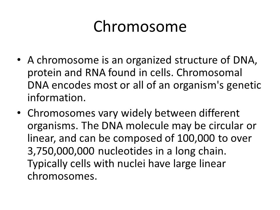 Chromosome A chromosome is an organized structure of DNA, protein and RNA found in cells. Chromosomal DNA encodes most or all of an organism's genetic