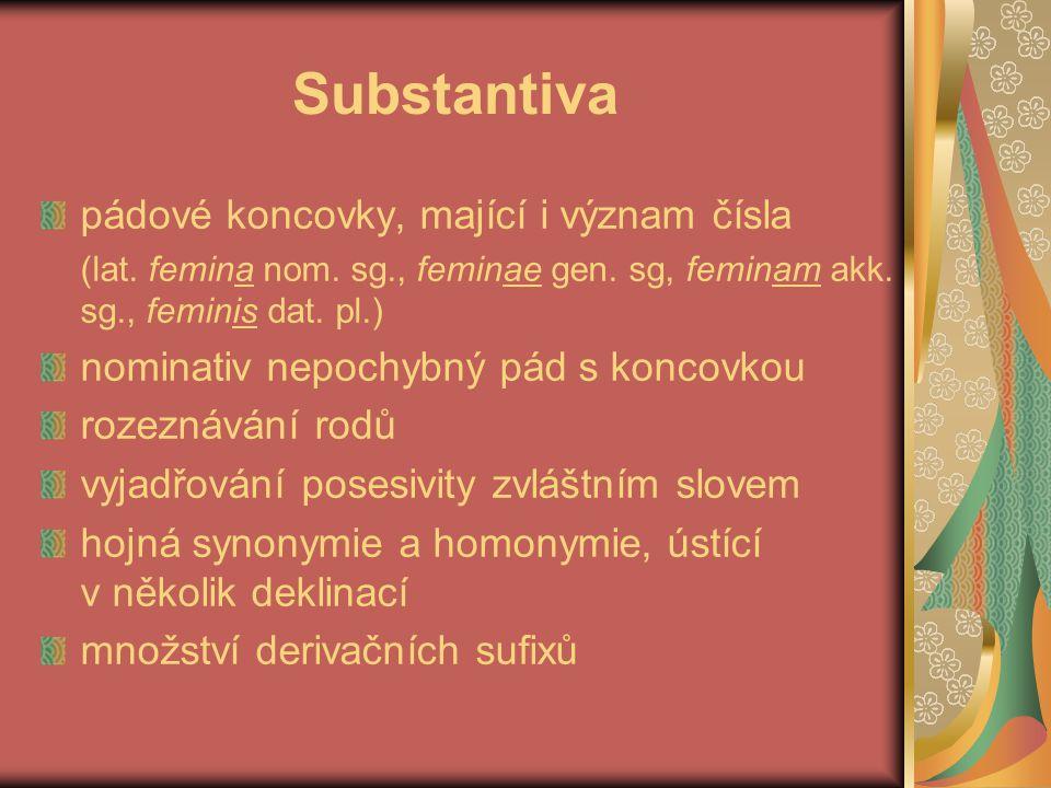 Adjektiva, číslovky, slovesa deklinace je odlišná od deklinace substantiv koncovka rozlišuje pád, číslo a rod kongruence mezi subst.