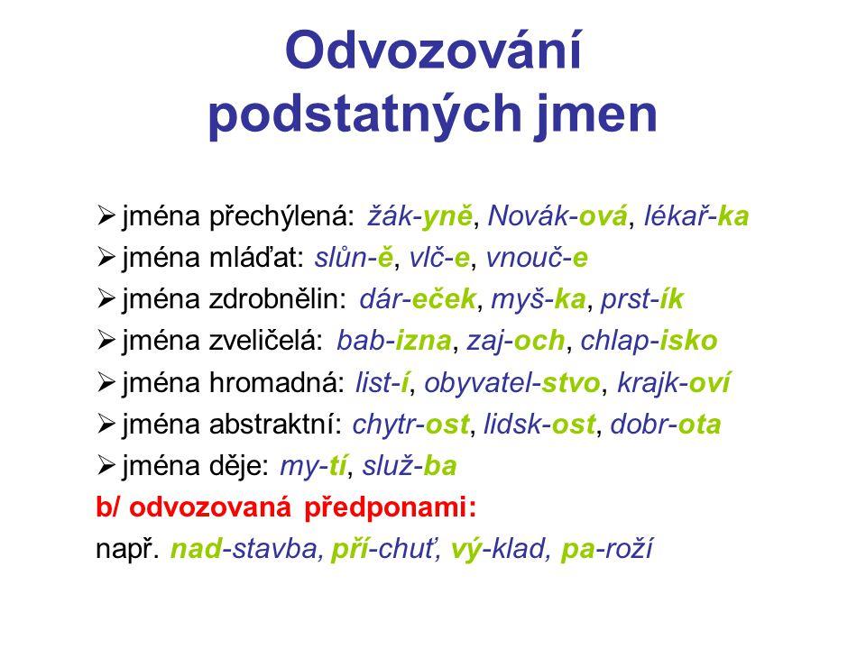 Odvozování podstatných jmen  jména přechýlená: žák-yně, Novák-ová, lékař-ka  jména mláďat: slůn-ě, vlč-e, vnouč-e  jména zdrobnělin: dár-eček, myš-