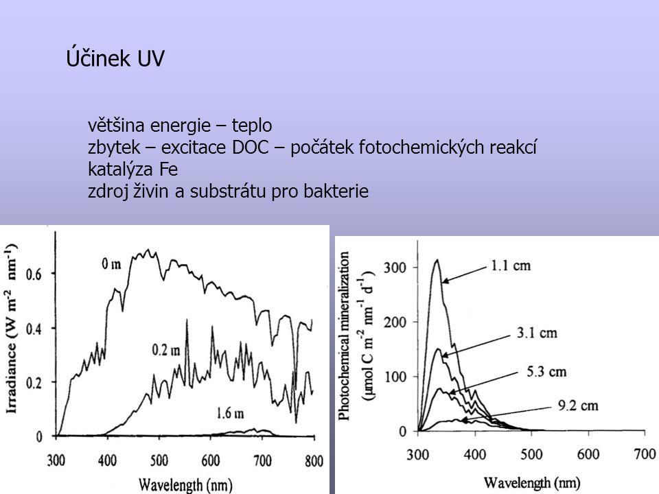 Účinek UV většina energie – teplo zbytek – excitace DOC – počátek fotochemických reakcí katalýza Fe zdroj živin a substrátu pro bakterie