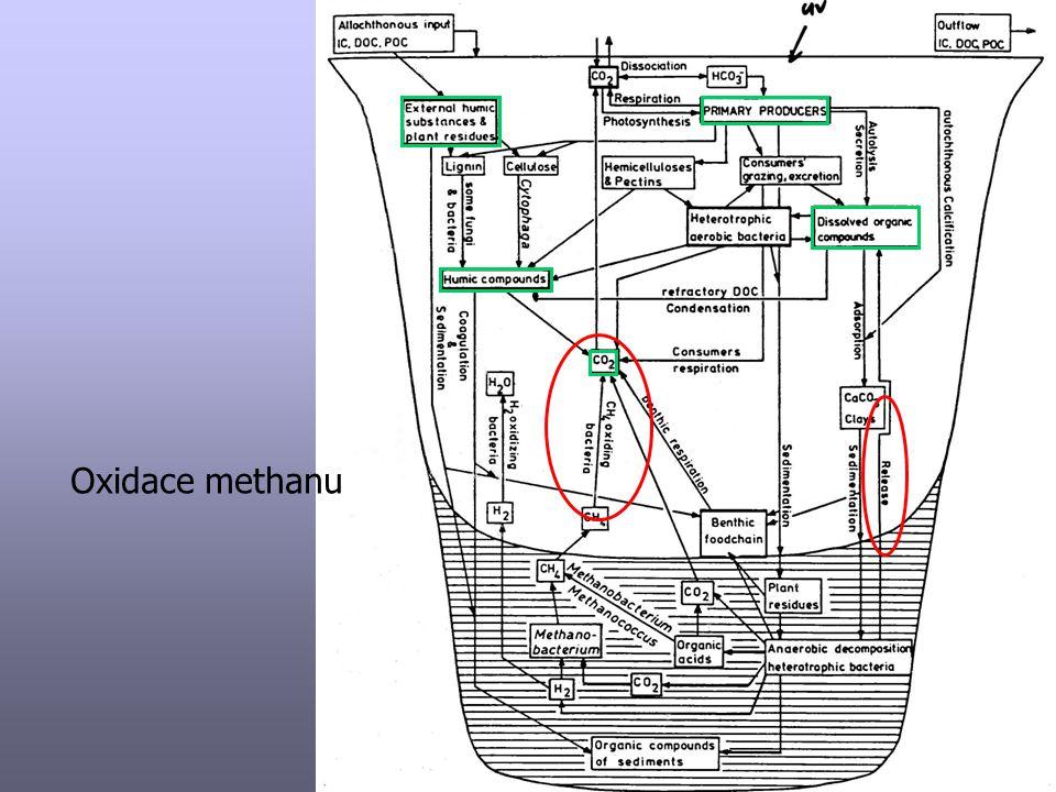 Oxidace methanu