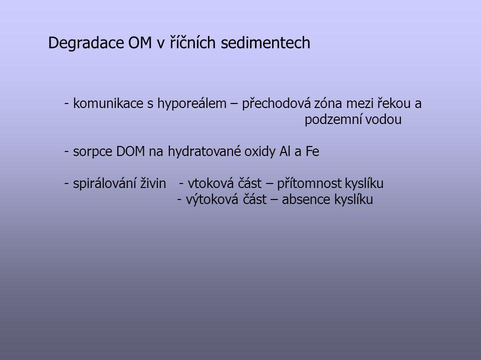 Degradace OM v říčních sedimentech - komunikace s hyporeálem – přechodová zóna mezi řekou a podzemní vodou - sorpce DOM na hydratované oxidy Al a Fe -