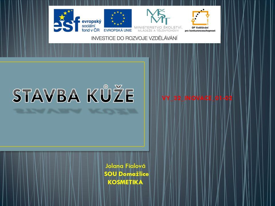 VY_32_INOVACE_01-02 Jolana Fialová SOU Domažlice KOSMETIKA