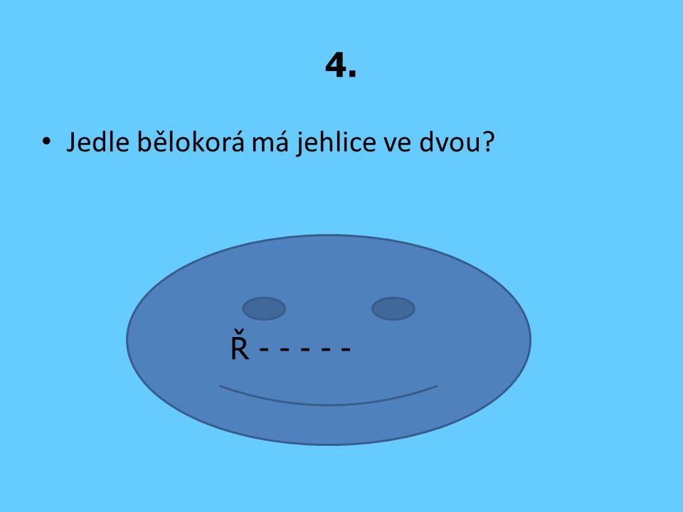 4. Jedle bělokorá má jehlice ve dvou? Ř - - - - -