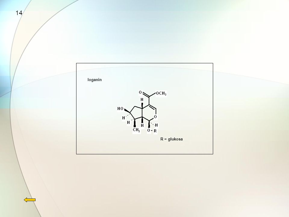 14 loganin R = glukosa
