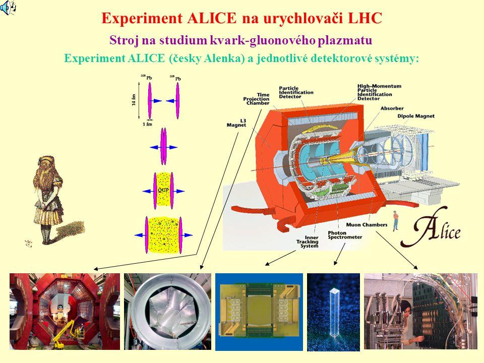 Experiment ALICE na urychlovači LHC Experiment ALICE (česky Alenka) a jednotlivé detektorové systémy: Stroj na studium kvark-gluonového plazmatu