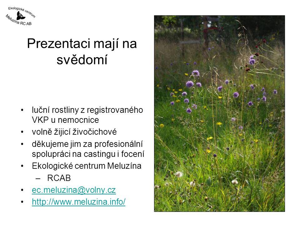 Prezentaci mají na svědomí luční rostliny z registrovaného VKP u nemocnice volně žijicí živočichové děkujeme jim za profesionální spolupráci na castingu i focení Ekologické centrum Meluzína – RCAB ec.meluzina@volny.cz http://www.meluzina.info/