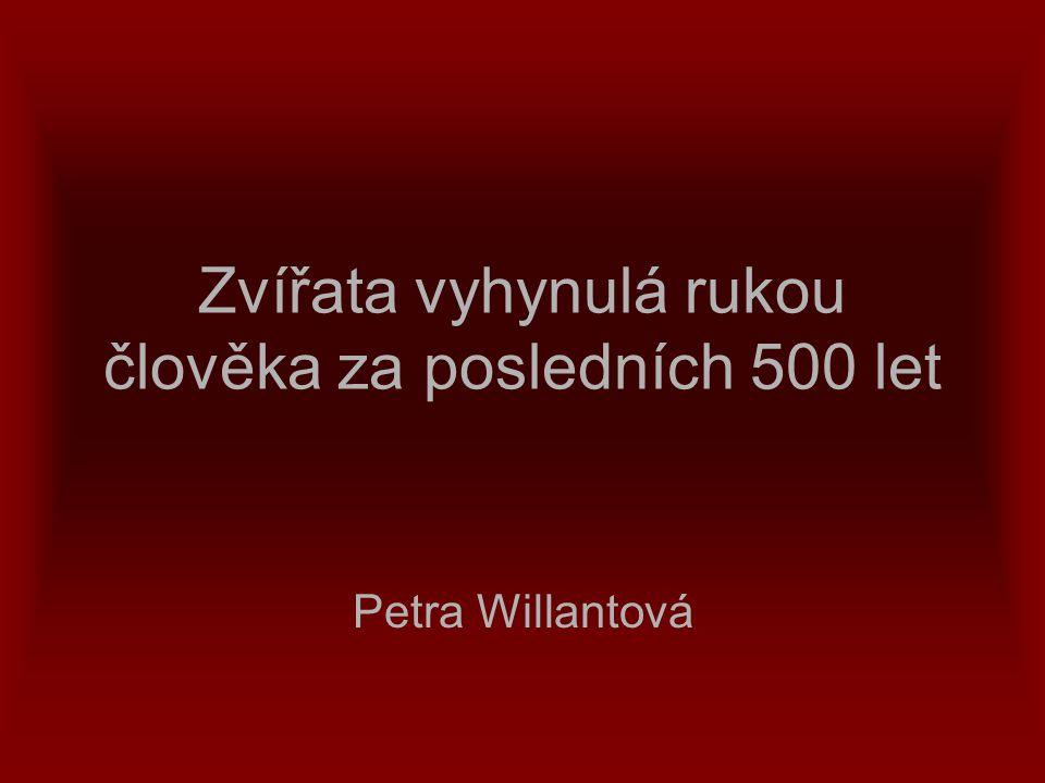 Zvířata vyhynulá rukou člověka za posledních 500 let Petra Willantová