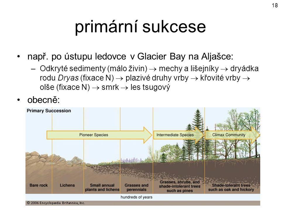 primární sukcese např. po ústupu ledovce v Glacier Bay na Aljašce: –Odkryté sedimenty (málo živin)  mechy a lišejníky  dryádka rodu Dryas (fixace N)