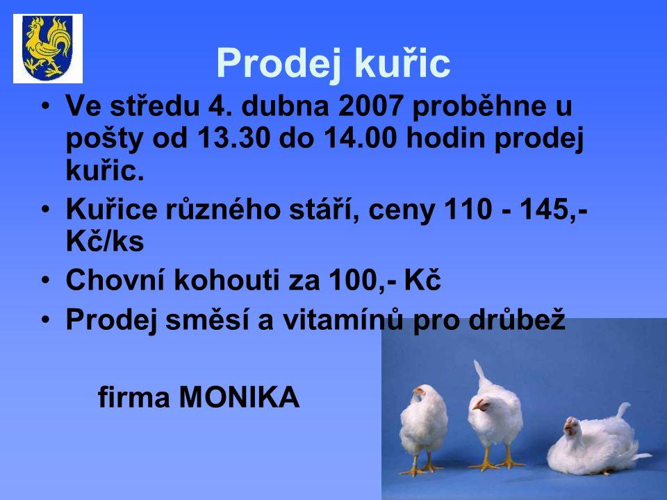 Prodej kuřic Ve středu 4. dubna 2007 proběhne u pošty od 13.30 do 14.00 hodin prodej kuřic.
