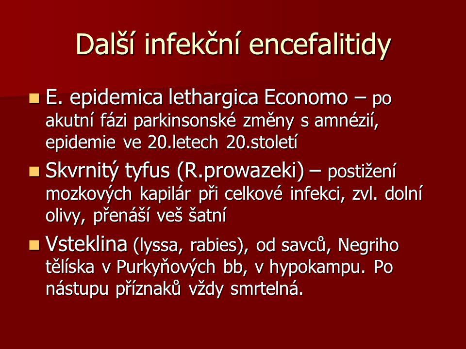 Další infekční encefalitidy E.