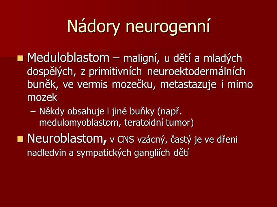Nádory neurogenní Meduloblastom – maligní, u dětí a mladých dospělých, z primitivních neuroektodermálních buněk, ve vermis mozečku, metastazuje i mimo mozek Meduloblastom – maligní, u dětí a mladých dospělých, z primitivních neuroektodermálních buněk, ve vermis mozečku, metastazuje i mimo mozek –Někdy obsahuje i jiné buňky (např.