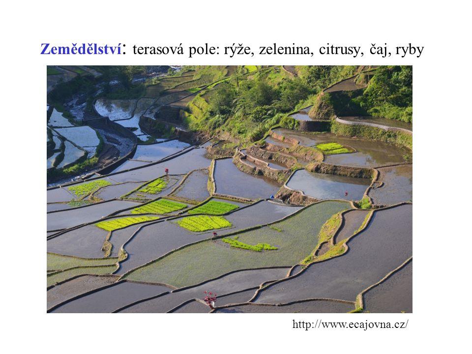 Zemědělství : terasová pole: rýže, zelenina, citrusy, čaj, ryby http://www.ecajovna.cz/