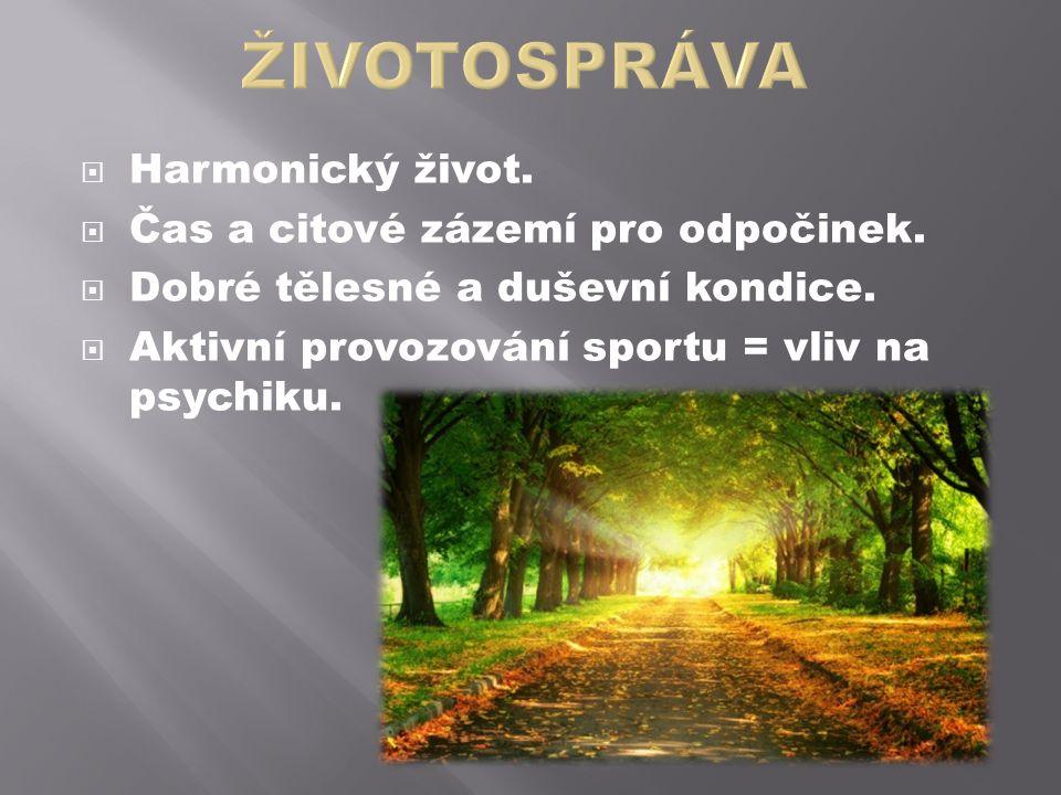  Harmonický život.  Čas a citové zázemí pro odpočinek.  Dobré tělesné a duševní kondice.  Aktivní provozování sportu = vliv na psychiku.