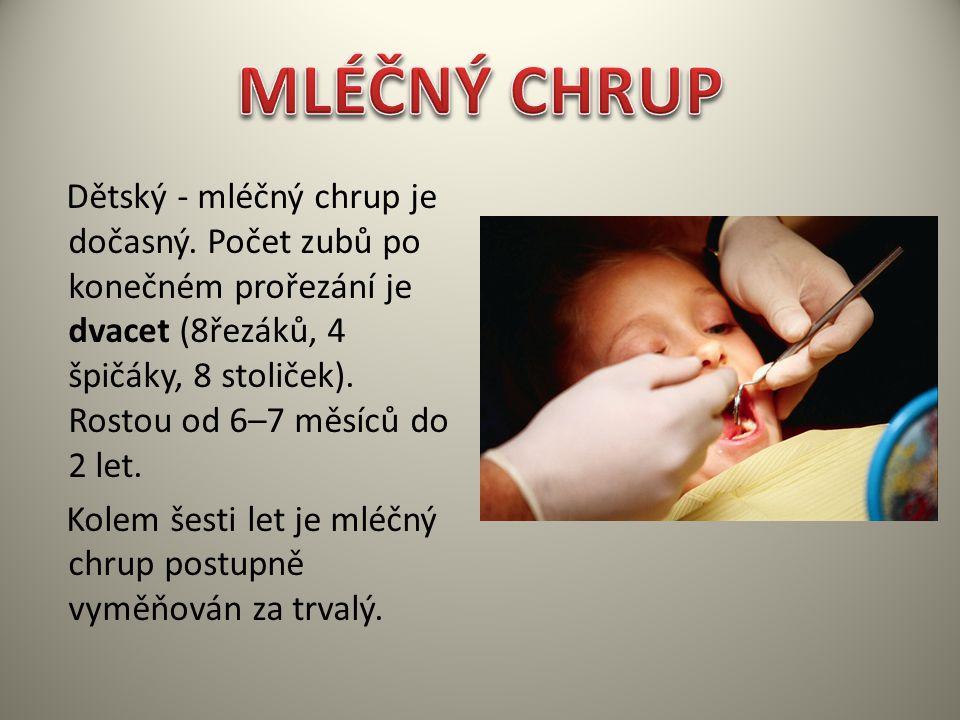 Dětský - mléčný chrup je dočasný. Počet zubů po konečném prořezání je dvacet (8řezáků, 4 špičáky, 8 stoliček). Rostou od 6–7 měsíců do 2 let. Kolem še
