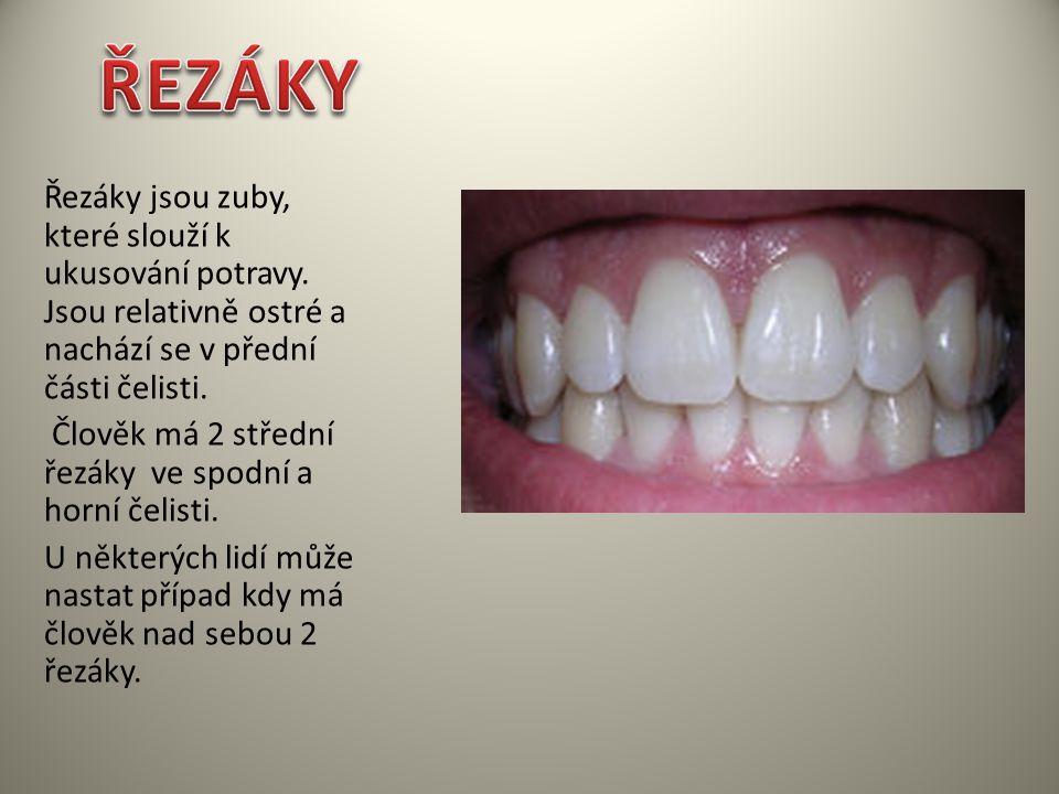 Řezáky jsou zuby, které slouží k ukusování potravy. Jsou relativně ostré a nachází se v přední části čelisti. Člověk má 2 střední řezáky ve spodní a h