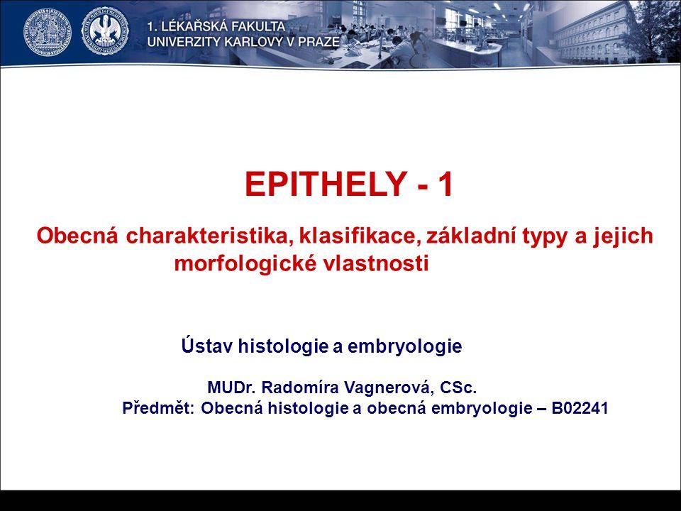 EPITHELOVÁ TKÁŇ Původ - ze zárodečných listů - ektoderm, entoderm, mezoderm Struktura - těsně seskupené buňky; těsná spojení (zonula occludens), mechanická - adhezní spojení (adhesivní molekuly - cadheriny, integriny), desmosomy (cadheriny, cytokeratinová intermediární filamenta), hemidesmosomy (integriny, cytokeratin), nexy - gap junctions (connexony) Rozdělení epithelů podle stavby (uspořádání): 1.