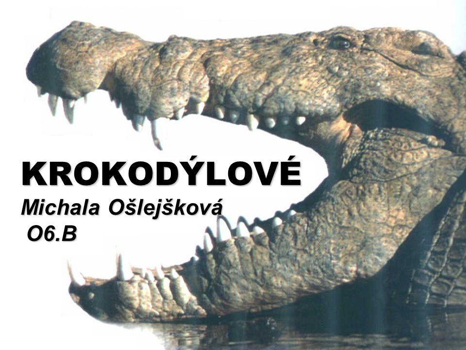  krokodýlové = pozůstatky minulosti  patří k nejstarším živočichům, dokonce starší než dinosauři ( asi před 200 milióny lety )  vzhled od počátku vývoje změněn jen nepatrně  dříve pouze suchozemští – delší končetiny a kratší čelisti  přežili konec druhohor – vyhynutí dinosaurů  velká přizpůsobivost  dnes hrozí vyhynutí