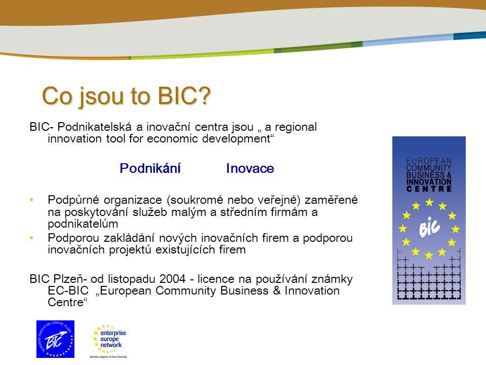 Co jsou to BIC.