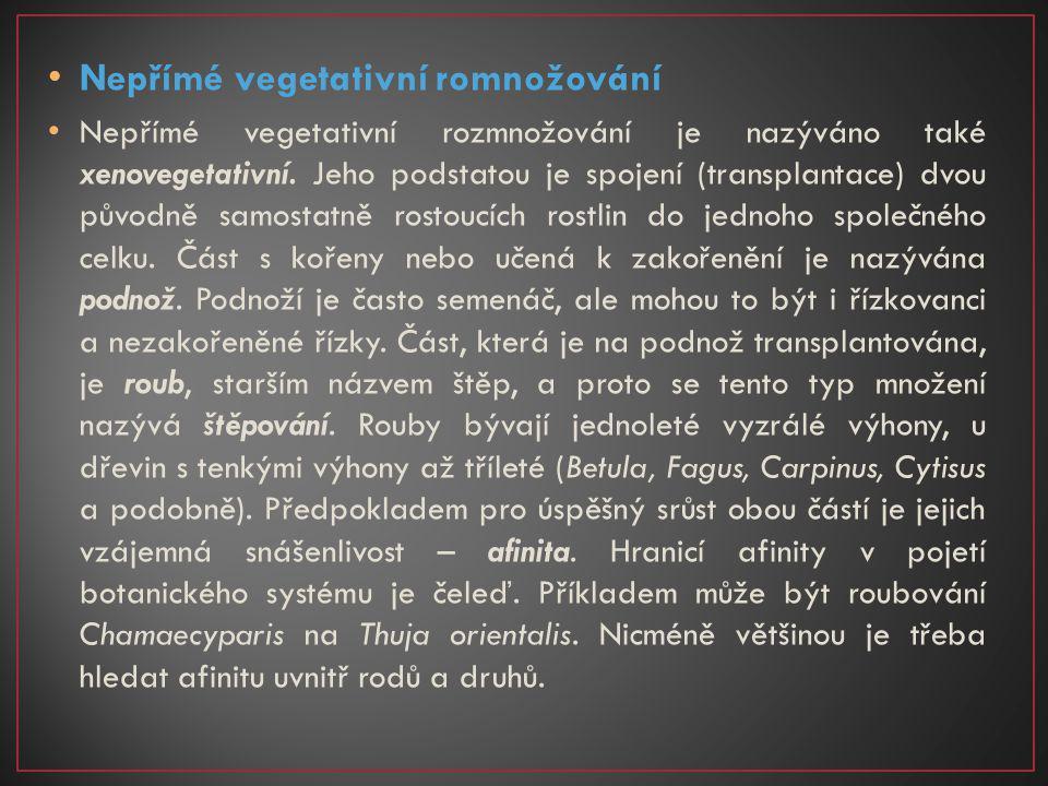 Nepřímé vegetativní romnožování Nepřímé vegetativní rozmnožování je nazýváno také xenovegetativní. Jeho podstatou je spojení (transplantace) dvou půvo