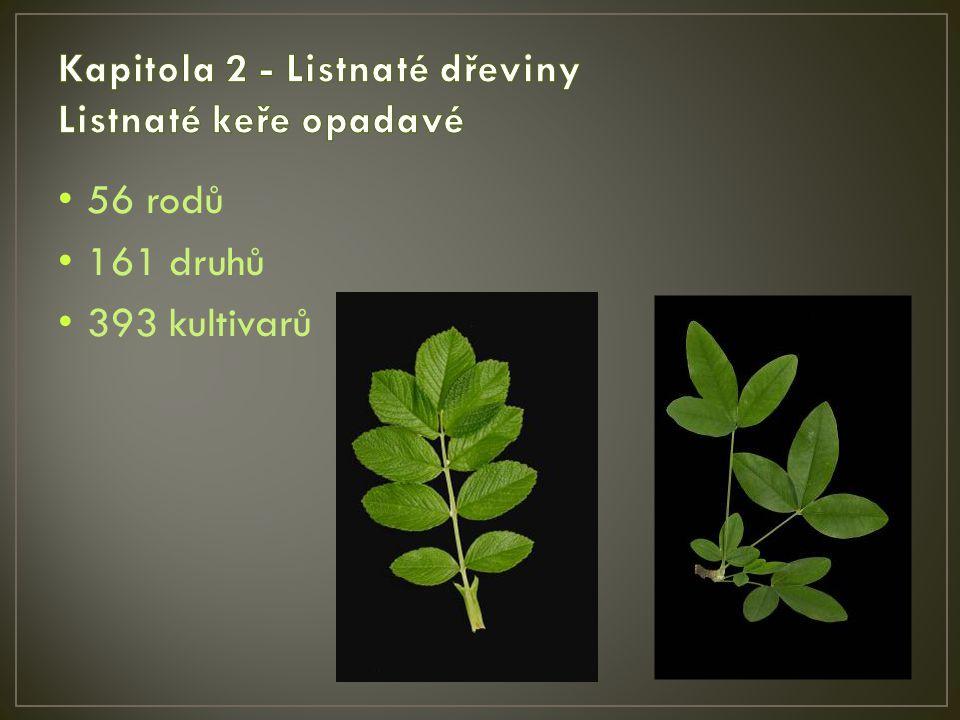 56 rodů 161 druhů 393 kultivarů