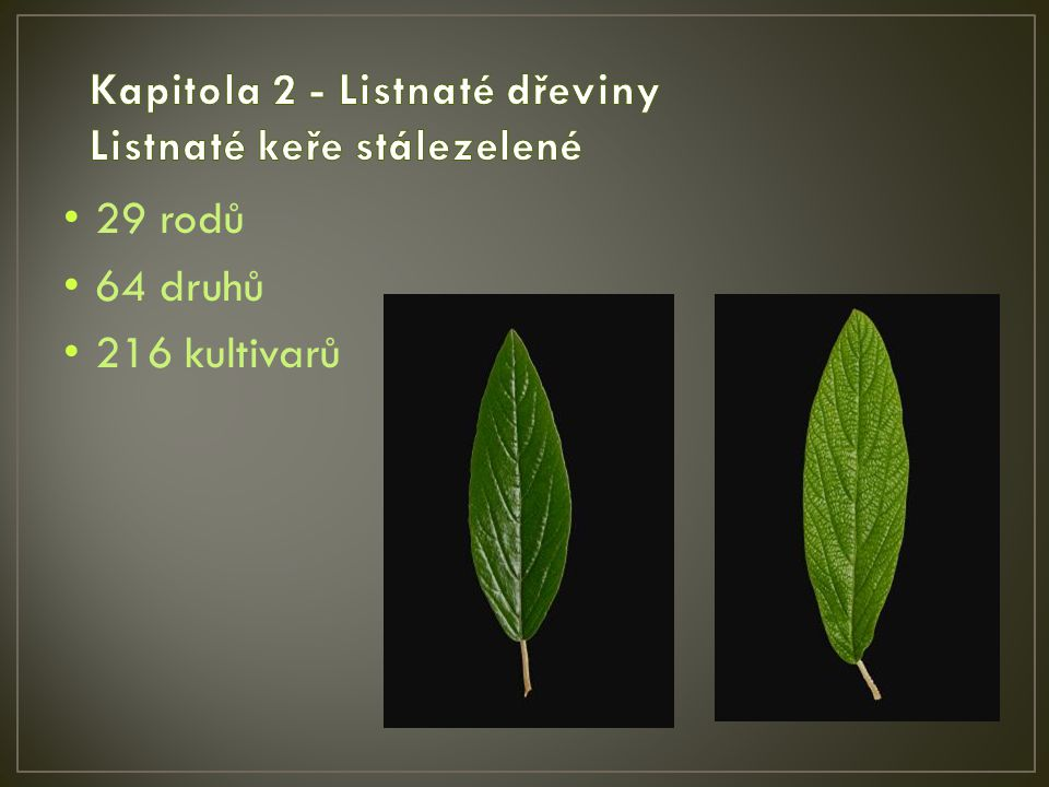29 rodů 64 druhů 216 kultivarů
