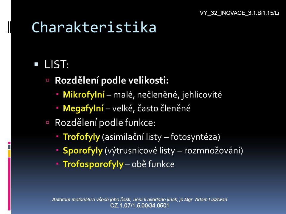 Charakteristika LLIST: RRozdělení podle velikosti: MMikrofylní – malé, nečleněné, jehlicovité MMegafylní – velké, často členěné RRozdělení p