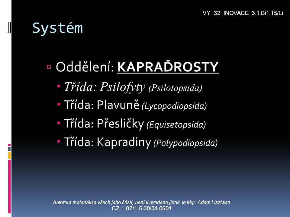 Systém  Oddělení: KAPRAĎROSTY  Třída: Psilofyty (Psilotopsida)  Třída: Plavuně (Lycopodiopsida)  Třída: Přesličky (Equisetopsida)  Třída: Kapradi