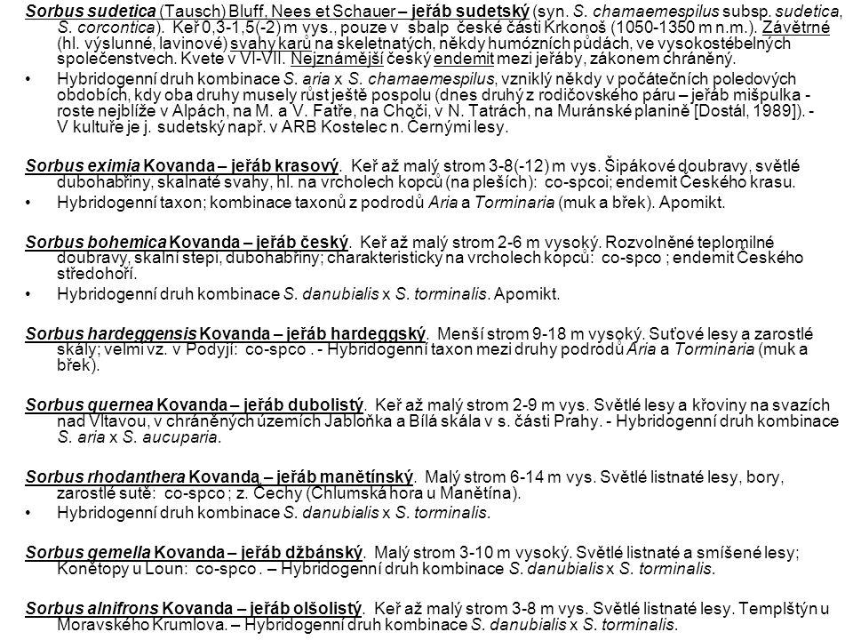 Sorbus sudetica (Tausch) Bluff, Nees et Schauer – jeřáb sudetský (syn. S. chamaemespilus subsp. sudetica, S. corcontica). Keř 0,3-1,5(-2) m vys., pouz