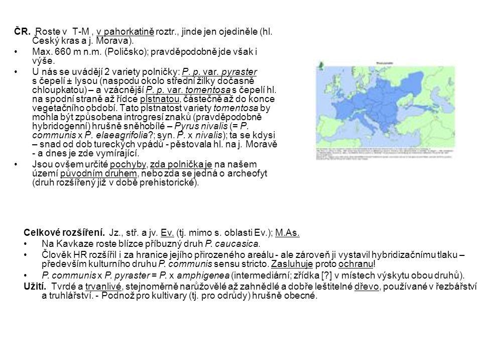 ČR. Roste v T-M, v pahorkatině roztr., jinde jen ojediněle (hl. Český kras a j. Morava). Max. 660 m n.m. (Poličsko); pravděpodobně jde však i výše. U