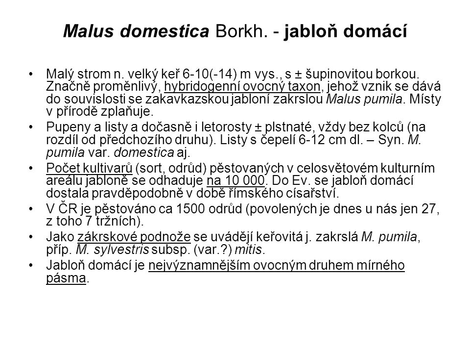 Malus domestica Borkh. - jabloň domácí Malý strom n. velký keř 6-10(-14) m vys., s ± šupinovitou borkou. Značně proměnlivý, hybridogenní ovocný taxon,