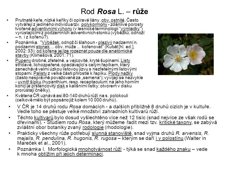 Rod Rosa L. – růže Prutnaté keře, nízké keříky či opíravé liány, obv. ostnité. Často vytvářejí z jediného individua tzv. polykormony - zdánlivé porost