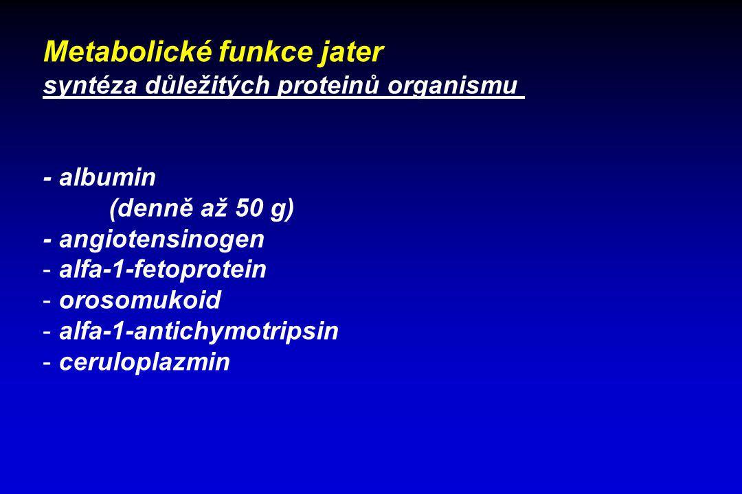 Metabolické funkce jater syntéza důležitých proteinů organismu - albumin (denně až 50 g) - angiotensinogen - alfa-1-fetoprotein - orosomukoid - alfa-1