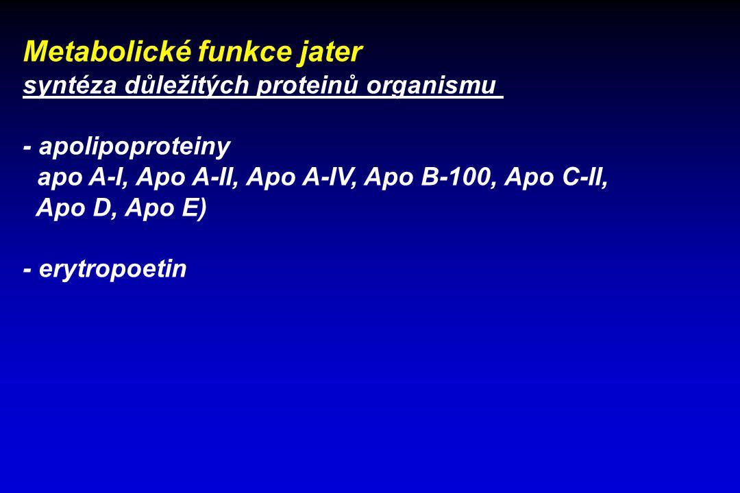 Metabolické funkce jater syntéza důležitých proteinů organismu - apolipoproteiny apo A-I, Apo A-II, Apo A-IV, Apo B-100, Apo C-II, Apo D, Apo E) - ery