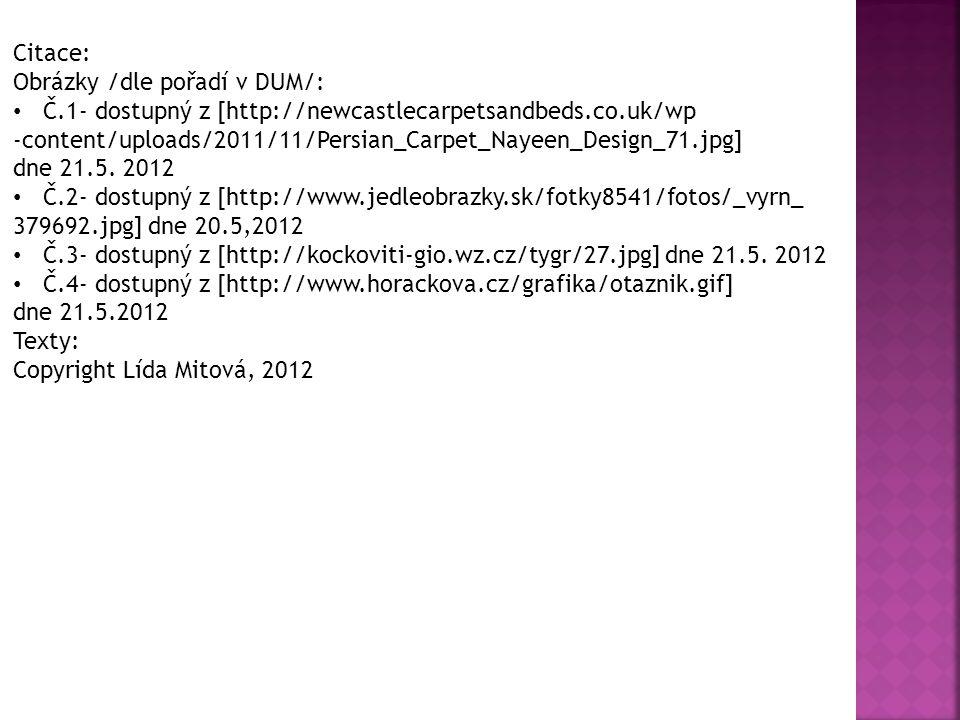 Citace: Obrázky /dle pořadí v DUM/: Č.1- dostupný z [http://newcastlecarpetsandbeds.co.uk/wp -content/uploads/2011/11/Persian_Carpet_Nayeen_Design_71.jpg] dne 21.5.