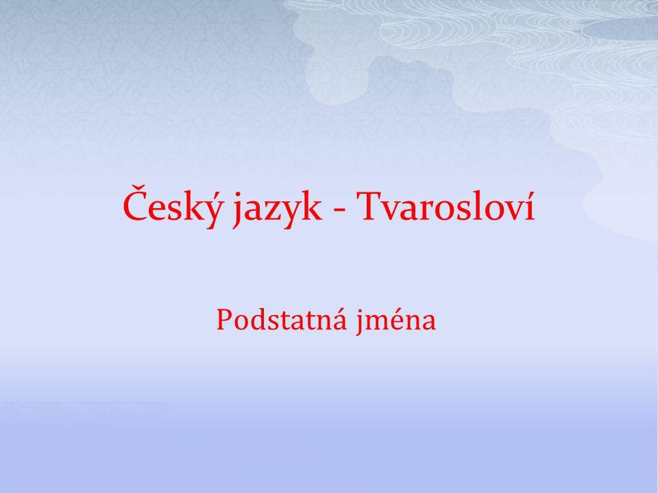 Podstatná jména Český jazyk - Tvarosloví