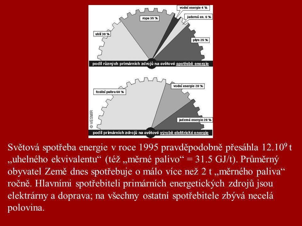 """Světová spotřeba energie v roce 1995 pravděpodobně přesáhla 12.10 9 t """"uhelného ekvivalentu"""" (též """"měrné palivo"""" = 31.5 GJ/t). Průměrný obyvatel Země"""