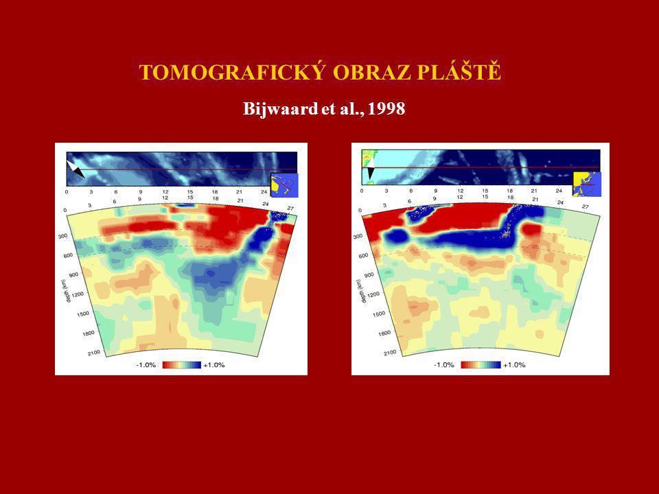 TOMOGRAFICKÝ OBRAZ PLÁŠTĚ Bijwaard et al., 1998