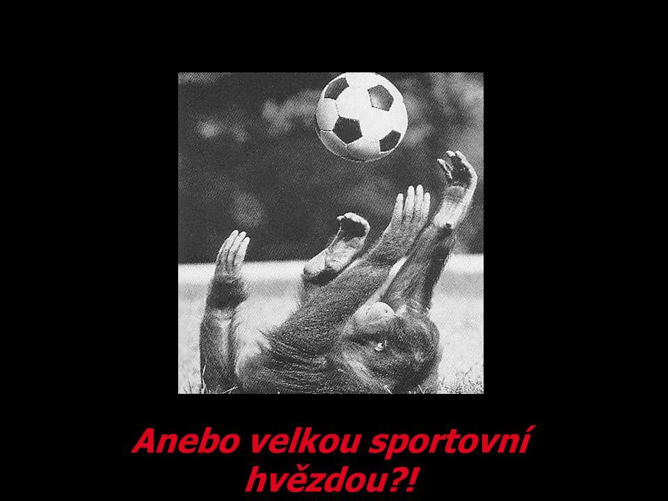 Anebo velkou sportovní hvězdou !