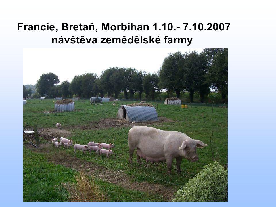 Francie, Bretaň, Morbihan 1.10.- 7.10.2007 návštěva zemědělské farmy