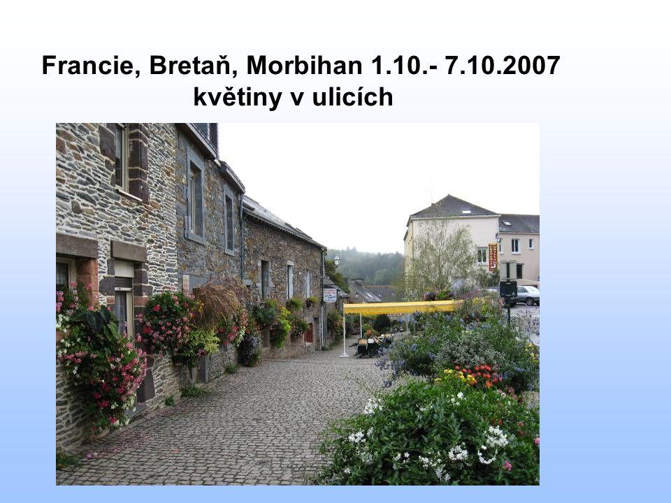 Francie, Bretaň, Morbihan 1.10.- 7.10.2007 květiny v ulicích