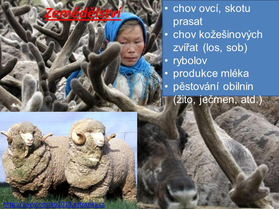 Zemědělství http://www.norsko2013.estranky.cz chov ovcí, skotu prasat chov kožešinových zvířat (los, sob) rybolov produkce mléka pěstování obilnin (ži