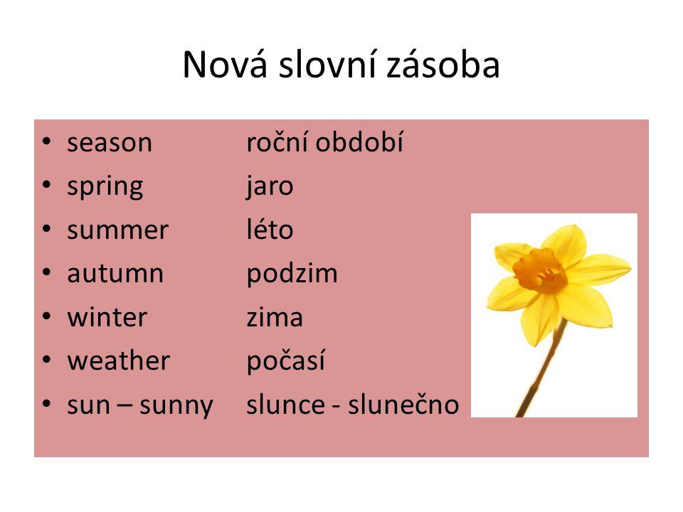 Nová slovní zásoba seasonroční období springjaro summerléto autumnpodzim winterzima weatherpočasí sun – sunnyslunce - slunečno