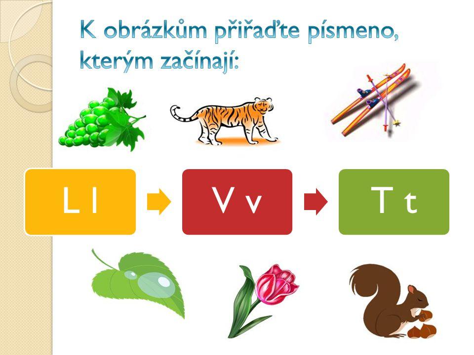 L lV vT t