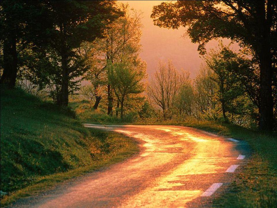 Sněte o tom, o čem chcete snít; jeďte tam, kam chcete jet; buďte tím, kým chcete být, protože život je jen jeden a jen jedna šance dělat všechny věci,