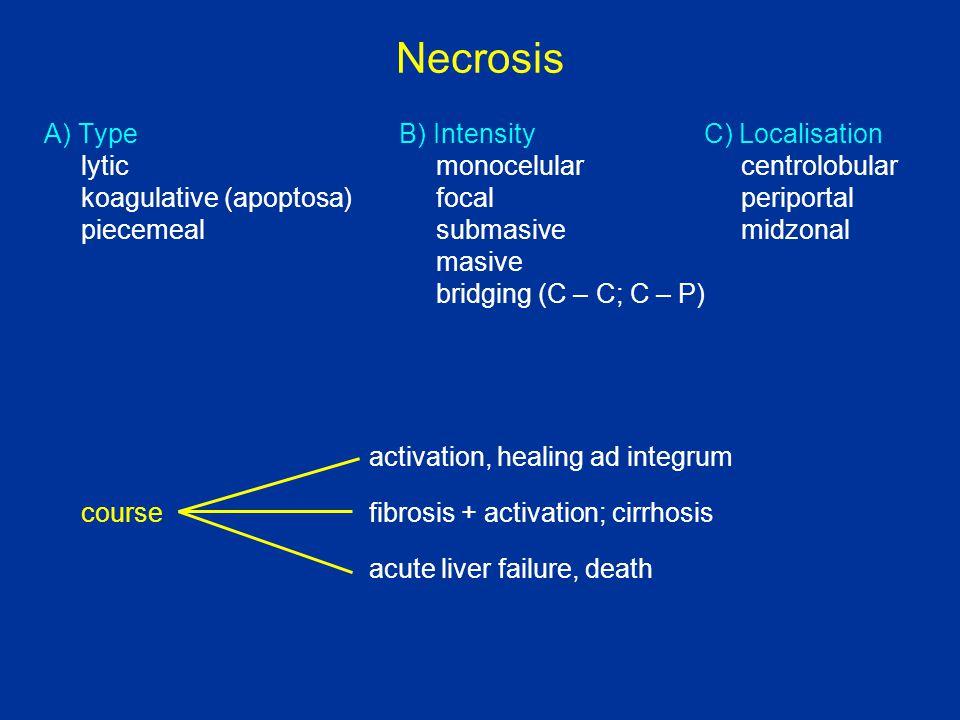 Cirrhosis hepatis