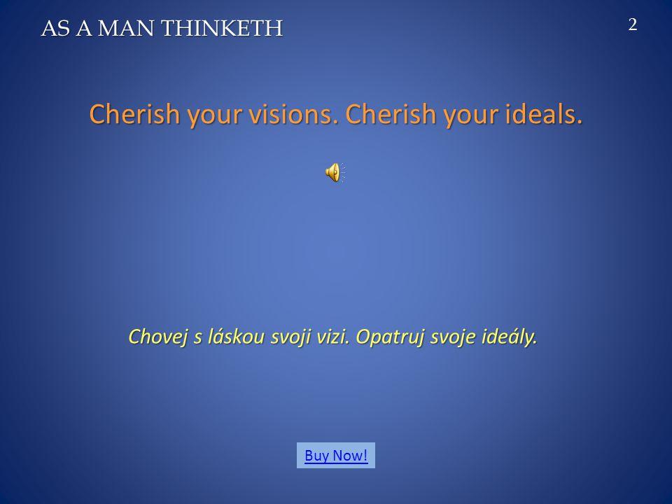 Cherish your visions.Cherish your ideals. Chovej s láskou svoji vizi.